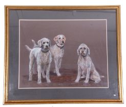 A portrait of three dogs named Polly, Kettle and Plum, charcoal on black card, signed by Carolyn