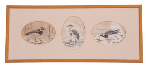 A H Patterson (British, 19th century), A set of three naturalist sketches, pen on paper signed,