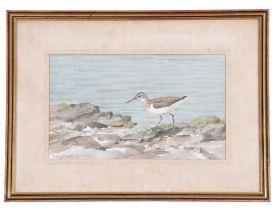 Peter Merrin (British, 20th century), A Sandpiper along the shoreline, watercolour, signed, 7 x