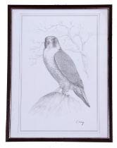 From the original sketches by Cornelius Varley, (British, 19th century), Three individual prints
