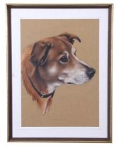 Peter J. Rowles Chapman (British 20th Century), Head of a dog, watercolour, signed, 13 x 17ins