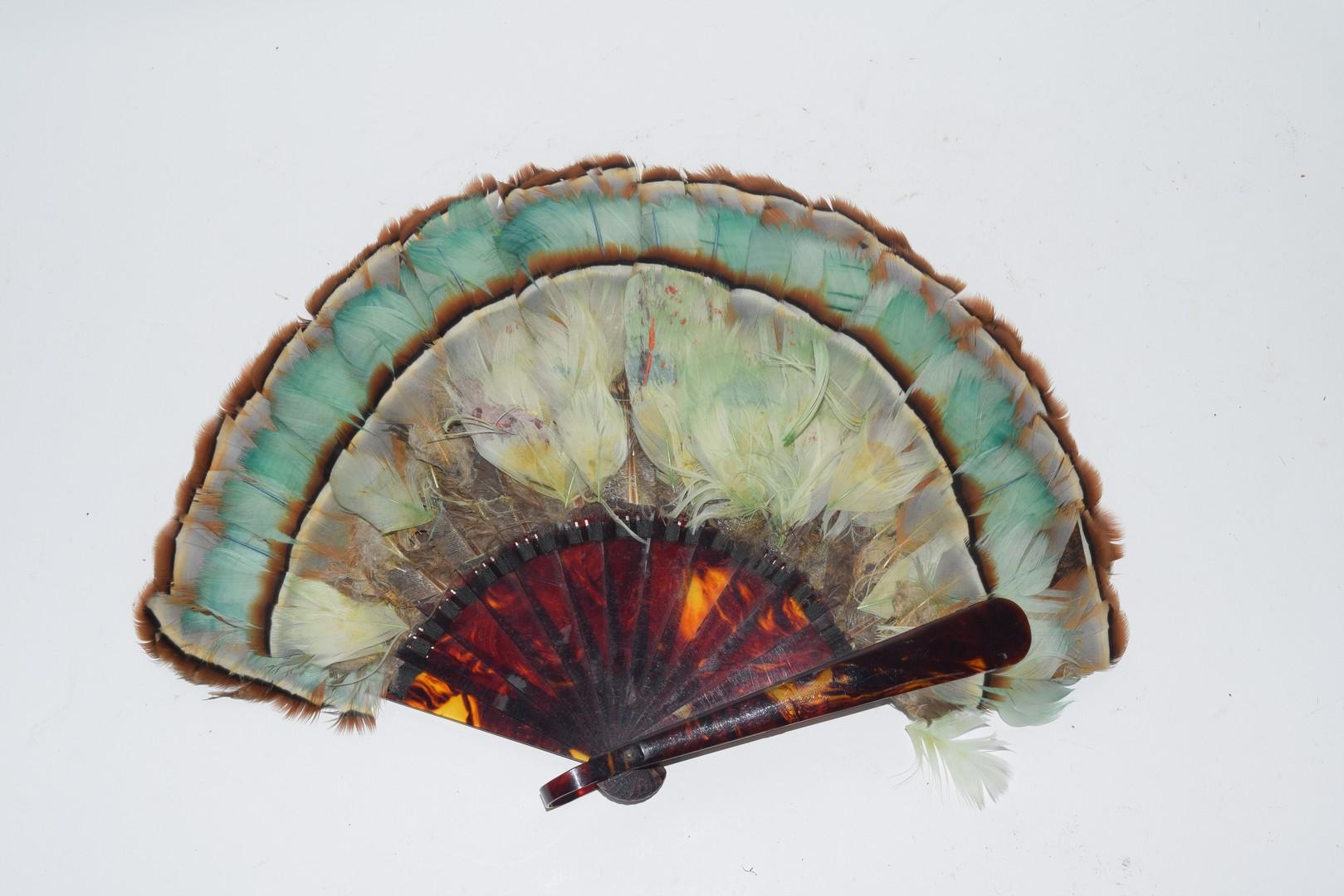 Bird Feather Fan
