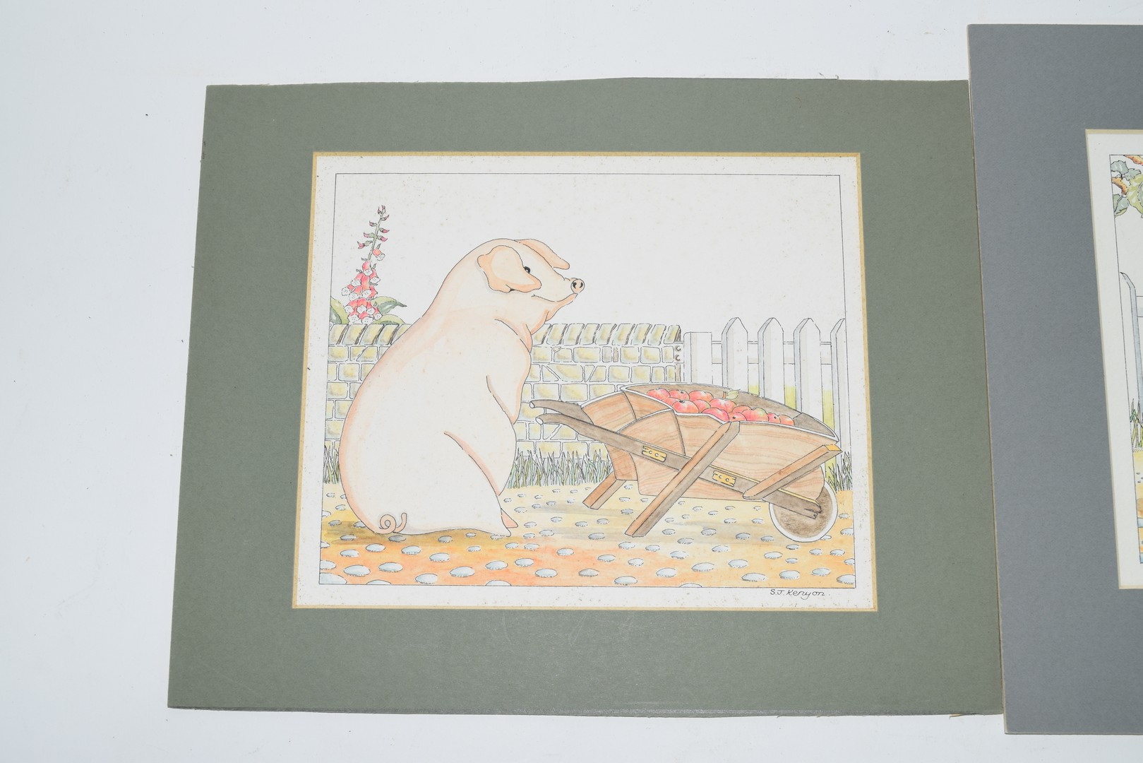 Watercolour of a pig pushing a wheelbarrow of apples s