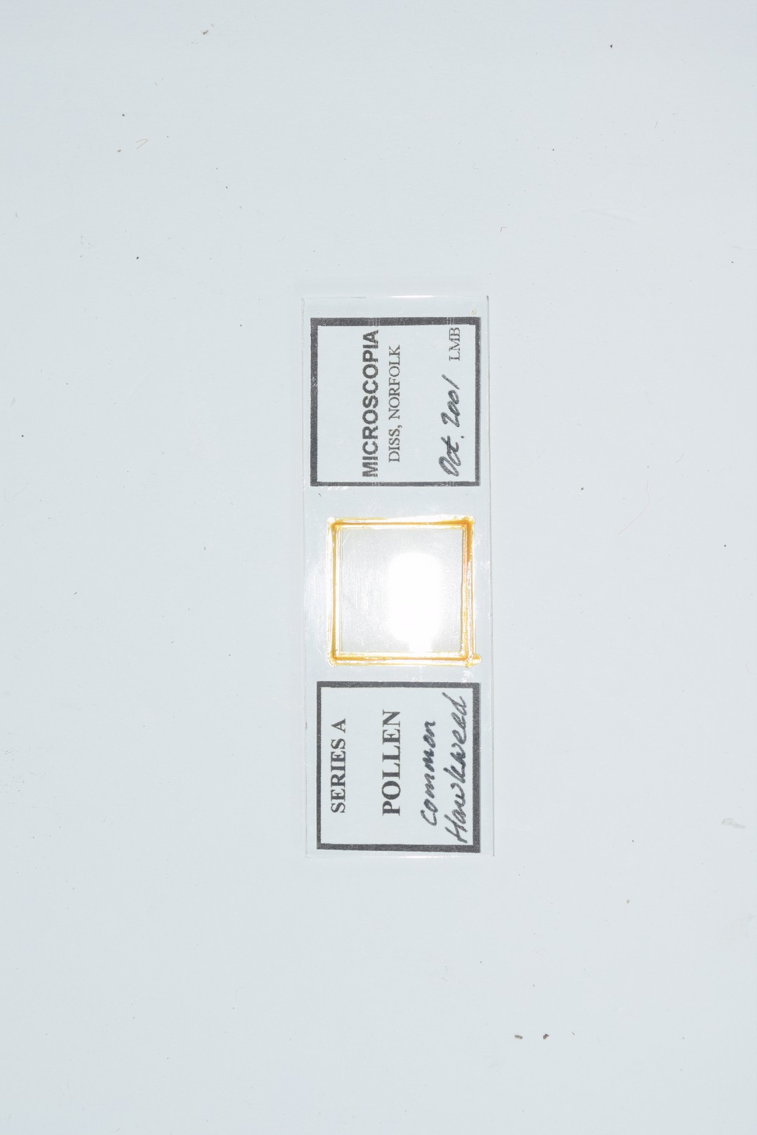 Collection of various microscope slides - Image 3 of 3