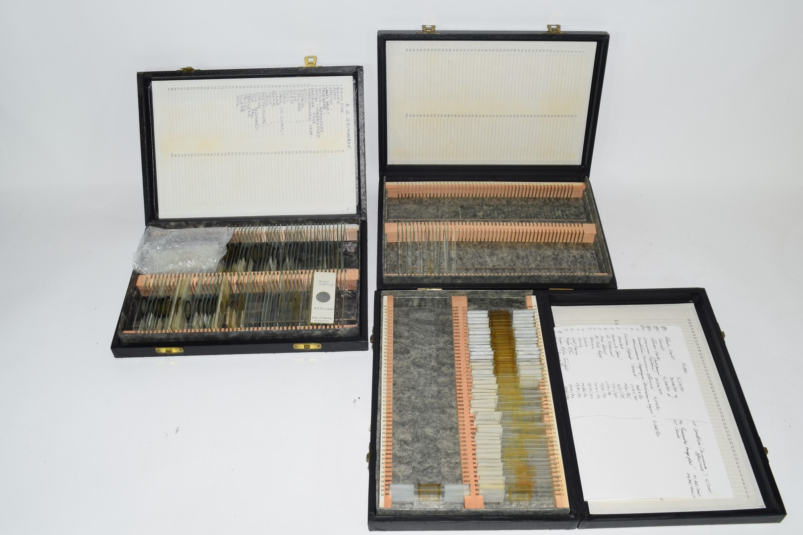Collection of various microscope slides