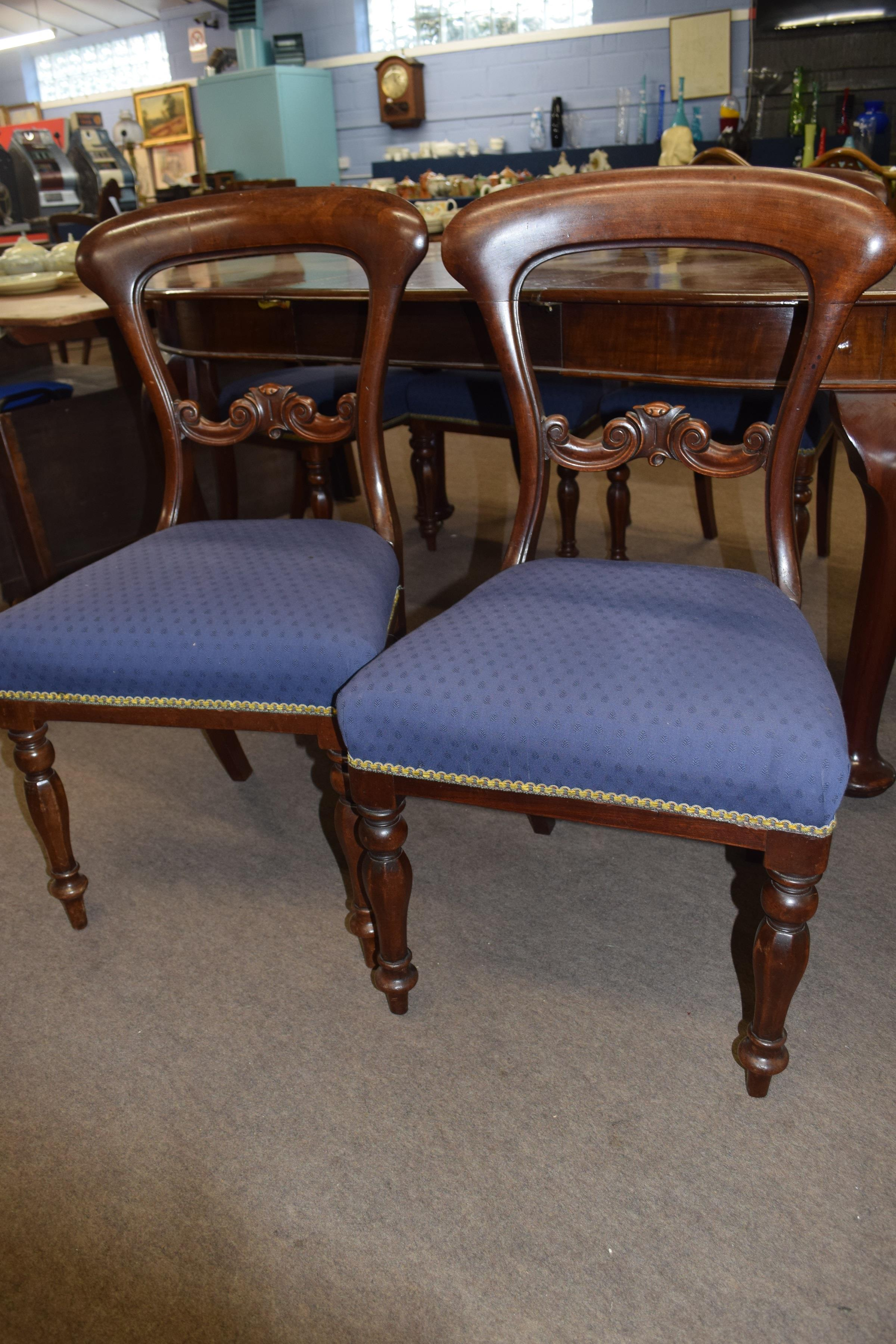 Set of six Victorian mahogany bar back dining chairs comprising two carvers with scrolled arms and - Image 6 of 10