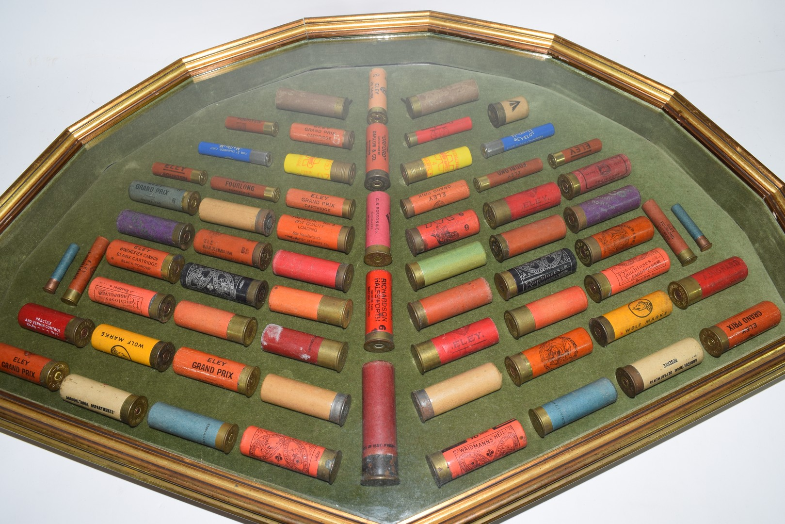 Cased collection of Shotgun Cartridges - Image 2 of 3