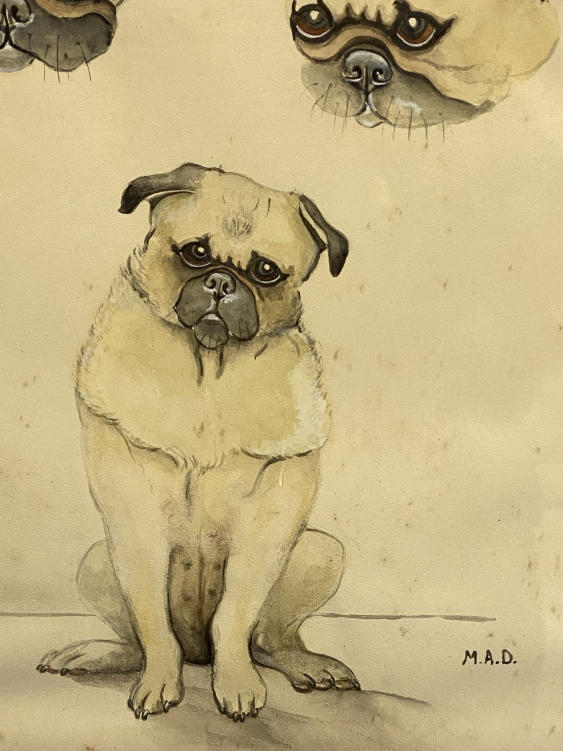Framed and glazed ink & pencil/mixed media study of Pug dogs, signed lower right MAD, overall size - Image 4 of 4