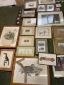 Approximately 25 sundry framed and glazed pictures, all with considerable wear