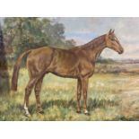 Pair of oil on canvas, Hunter in Stable, Hunter at Grass, signed W Wasdell Trickett 1923 & 1929 (