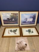 Pair framed and glazed modern coloured prints of an old short horn bull and a cow (overall 68 x 82