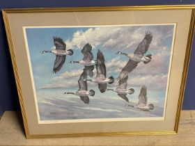 """After Charles Schwartz coloured print """"Canada Geese in flight"""" signed in pencil on mount 50 x 67"""