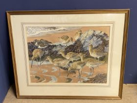 """CHARLES TUNNICLIFFE (1901-1979) watercolour """"Wintering Curlew and Turnstones"""" signed lower right, 42"""