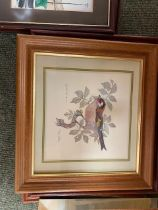 Quantity of Framed and glazed prints