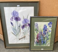 """Watercolour """"Delphiniums and foxgloves"""" indistinctly signed Diamond? Lower right 43 x27 framed and"""