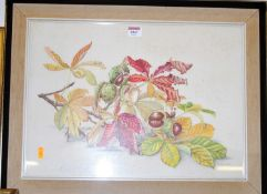 D Bovey - Conkers and chestnut leaves, watercolour, signed lower right, 35 x 50cm