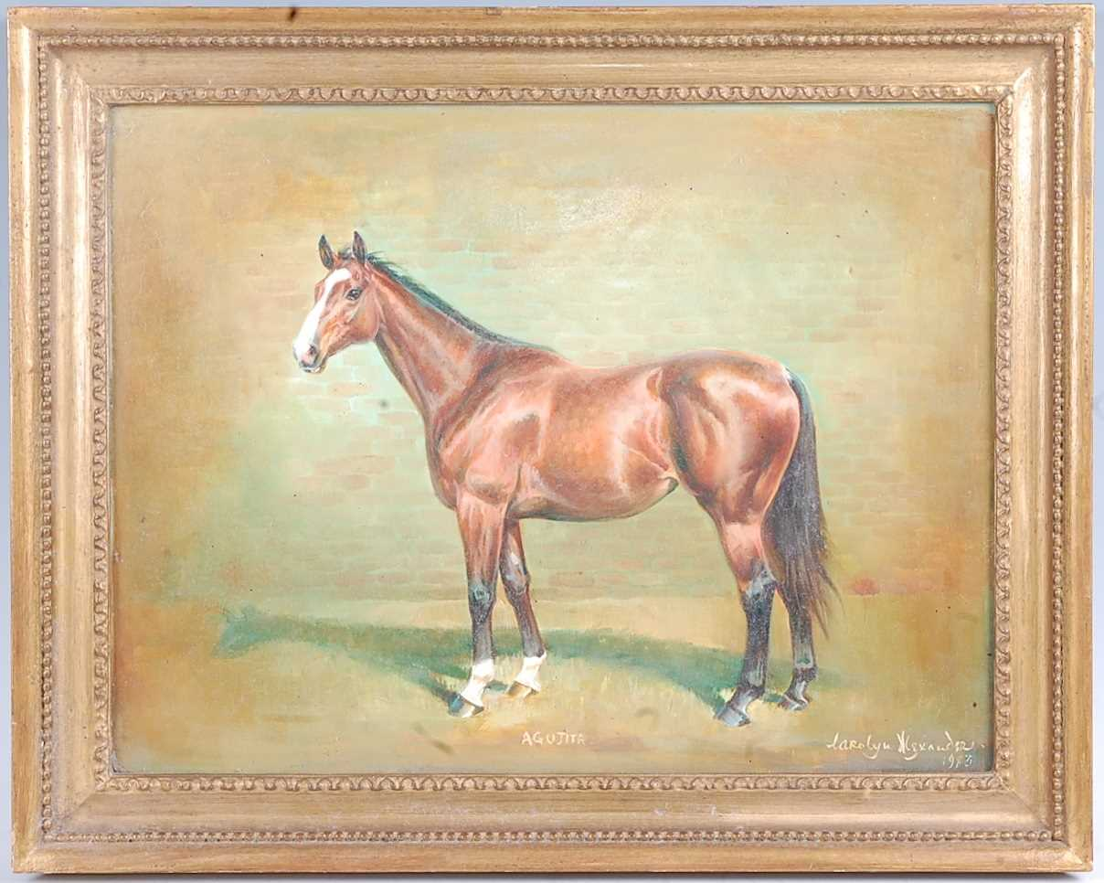 Carolyn Alexander, (20th century), profile portrait of the racehorse Indian Lodge, oil on board, - Image 3 of 5