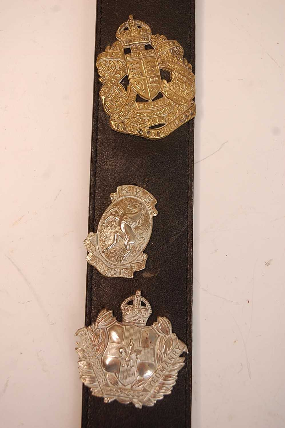 A collection of British Army Regiments cap badges and insignia to include East Surrey, Cornwall, 1st - Image 6 of 8