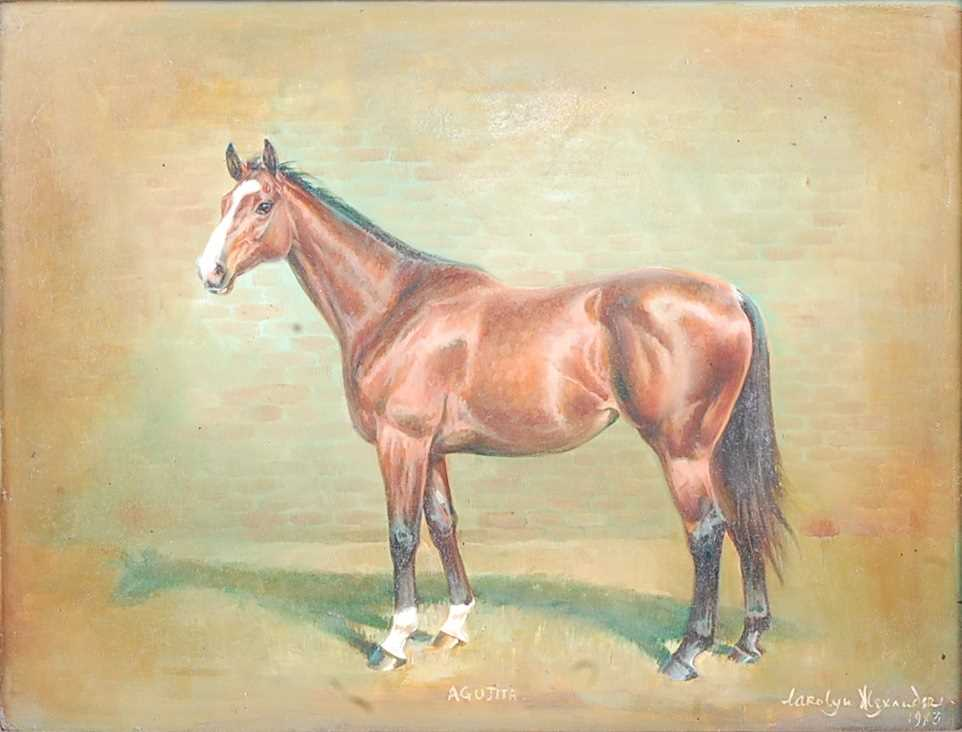 Carolyn Alexander, (20th century), profile portrait of the racehorse Indian Lodge, oil on board, - Image 4 of 5