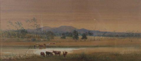 Edward Combes (Australian 1830-1895) - Cattle watering in an Australian landscape, watercolour