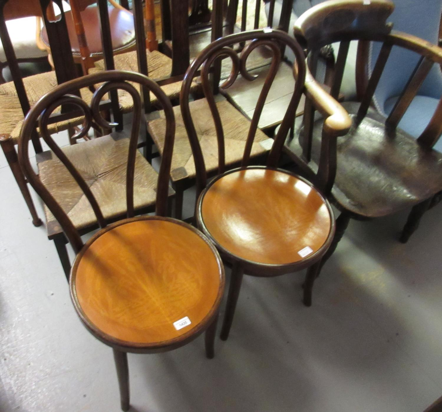 Pair of Bentwood cafe chairs, No. 16 by Thonet with iris and waterlily decorations, circa 1950