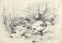 JOHN MIDDLETON (1827-1856) RIVER STUDY, POSSIBLY NEAR IVYBRIDGE, DEVON, c.1845 Artist's note Green