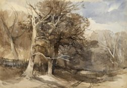 JOHN MIDDLETON (1827-1856) A NORFOLK WOODED LANDSCAPE Watercolour and pencil 33.5 x 48.5cm.