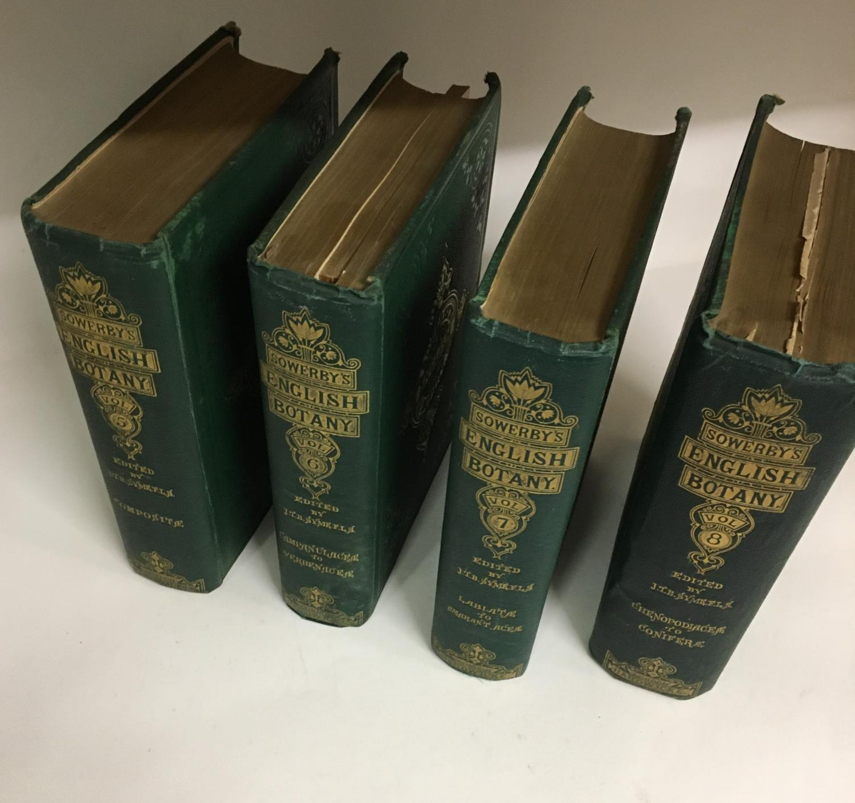 Sowerby, John Edward. English Botany; or, Coloured Figures of British Plants, volumes 1-11, third - Image 6 of 9