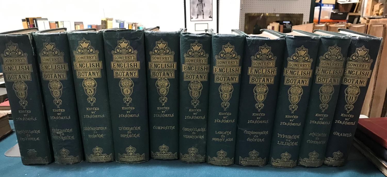 Sowerby, John Edward. English Botany; or, Coloured Figures of British Plants, volumes 1-11, third