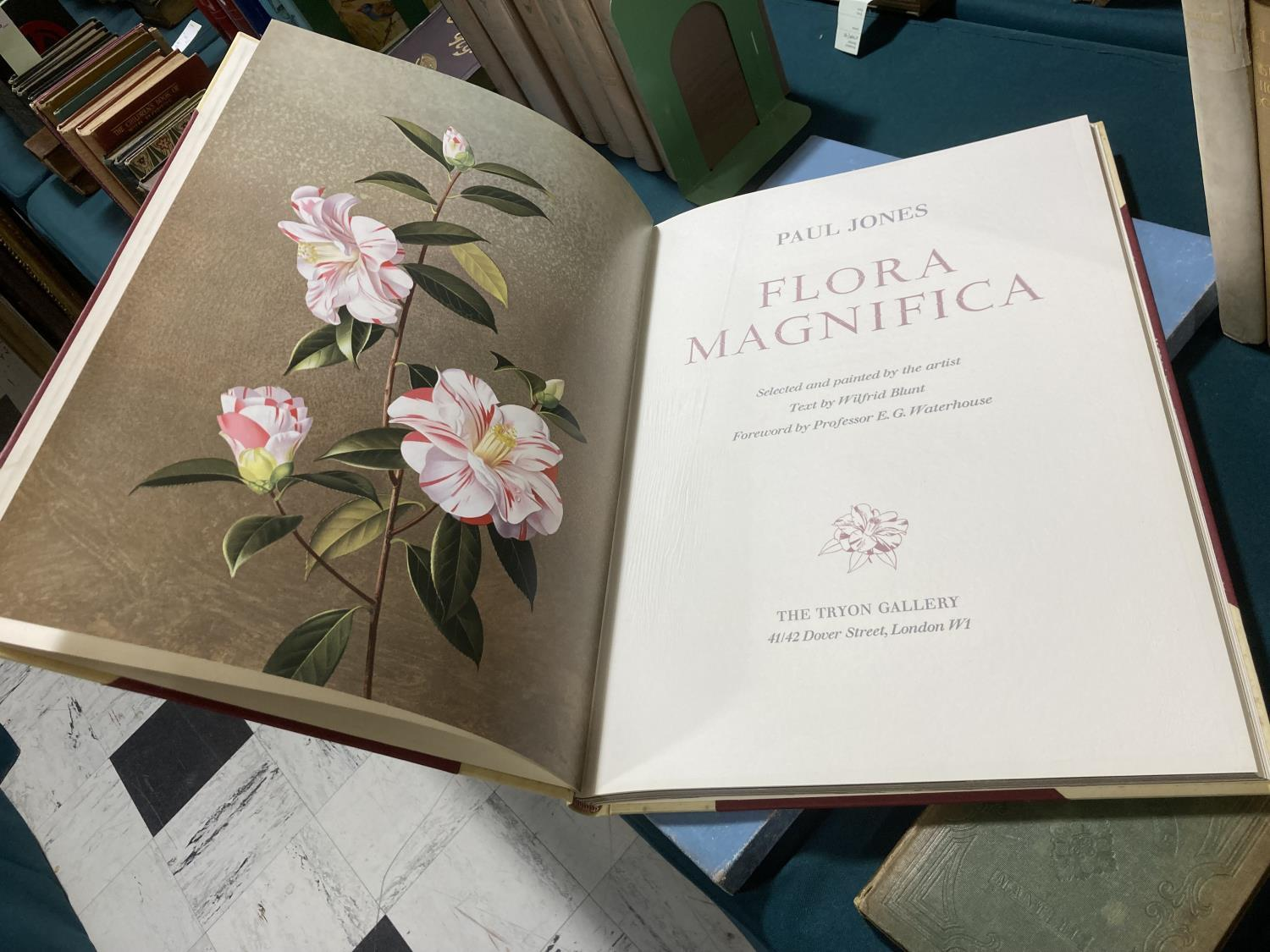 Jones, Paul. Flora Superba... text by Wilfrid Blunt, number 94 of 406 copies, 16 coloured plates, - Image 3 of 6