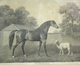 AFTER GEORGE STUBBS, ARA (1724-1806) DUNGANNON Stipple engraving, by George Townley Stubbs,