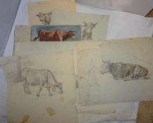 unbekannter Künstler, 12 Blätter, Bleistift, Aquarelle. Kuh-Studien. Bitte besichtigen!unknown ar