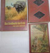 Lot Bücher zum Thema Tiere, dabei Hermann Wagner´s Naturgeschichten (nicht vollständig), Von den