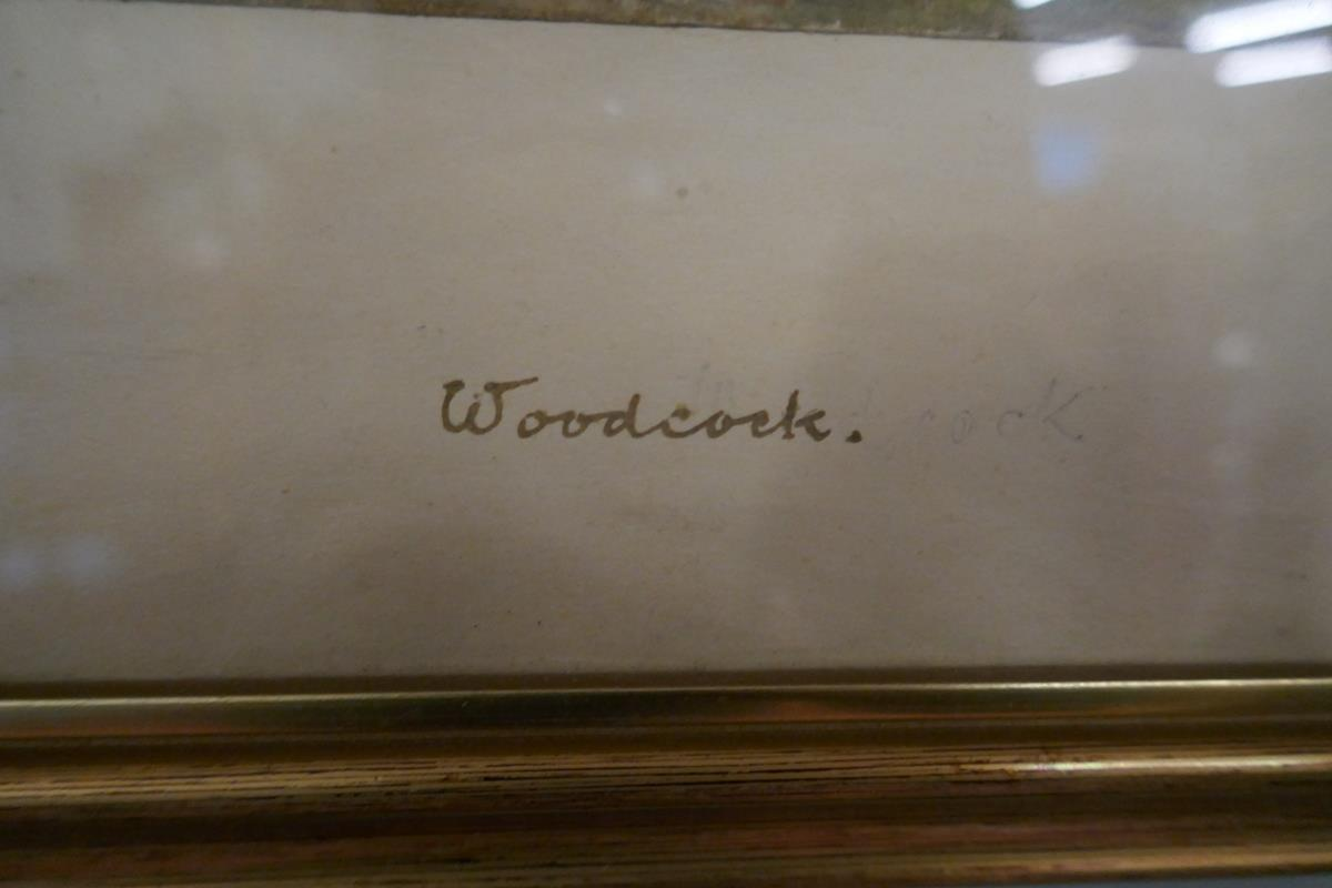 Pair of watercolours signed AVG - Cuckoo & Woodcock - Image 3 of 6