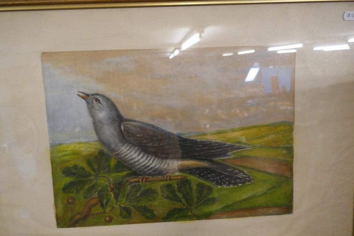 Pair of watercolours signed AVG - Cuckoo & Woodcock - Image 5 of 6