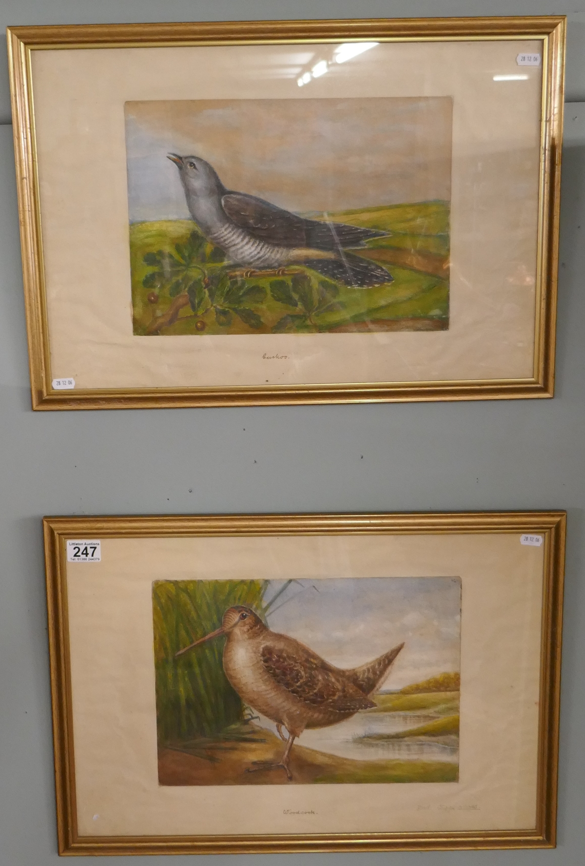 Pair of watercolours signed AVG - Cuckoo & Woodcock