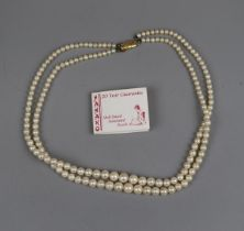 Simulated pearl necklace by Hanako with gold clasp