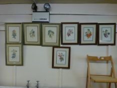 Eight framed and glazed botanical prints