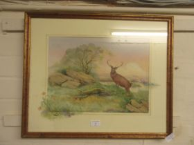 A framed and glazed watercolour of stag on hill signed Glenda Rae