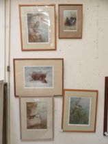 Five framed and glazed prints of birds all signed Archibald Thorburn