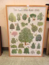 A set of four framed and glazed botanical educational prints