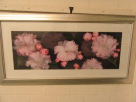 A framed and glazed print of still life