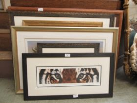 A selection of framed and glazed limited edition prints of rhinoceros, lion, elephant etc.