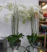 FAUX ORCHIDS, a set of two, in hammered metal containers, each approx 115cm H.