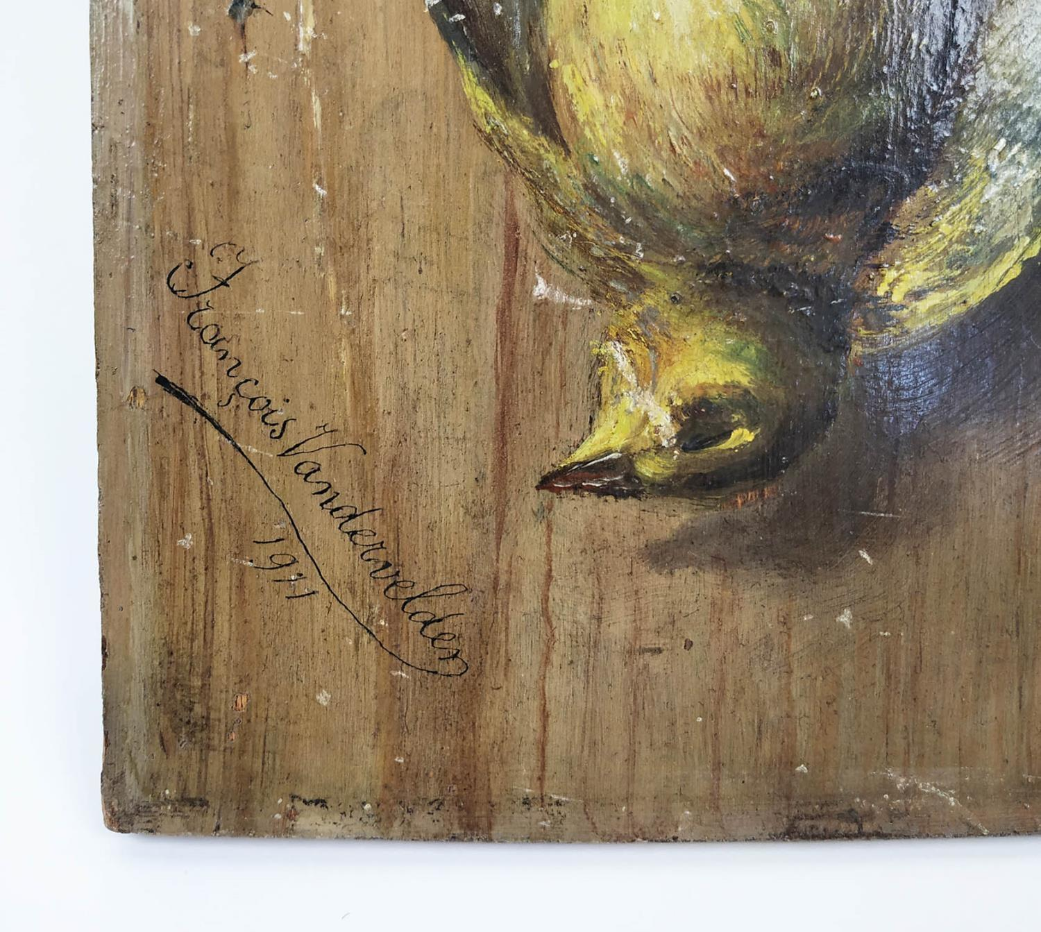DUTCH/FLEMISH SCHOOL TROMPE L'OEIL, oil on panel, study of hanging birds, signed and dated - Image 3 of 4