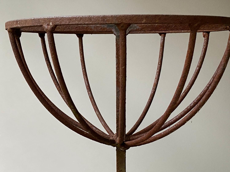 PLANT STAND, circular wrought iron three tier circular graduated basket form, 112cm x 166cm H. - Image 5 of 6