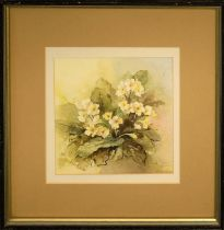 RENATE DAVIS 'Primroses', 2002, watercolour, signed and dated lower right, 21cm x 21cm, framed and