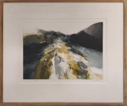 PETER MATTHEWS (b.1978) 'River', etching in colours, 33cm x 46cm, signed and framed. (Subject to ARR
