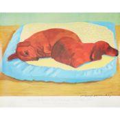 § DAVID HOCKNEY O.M., C.H., R.A. (BRITISH B.1937) DOG 43 POSTER
