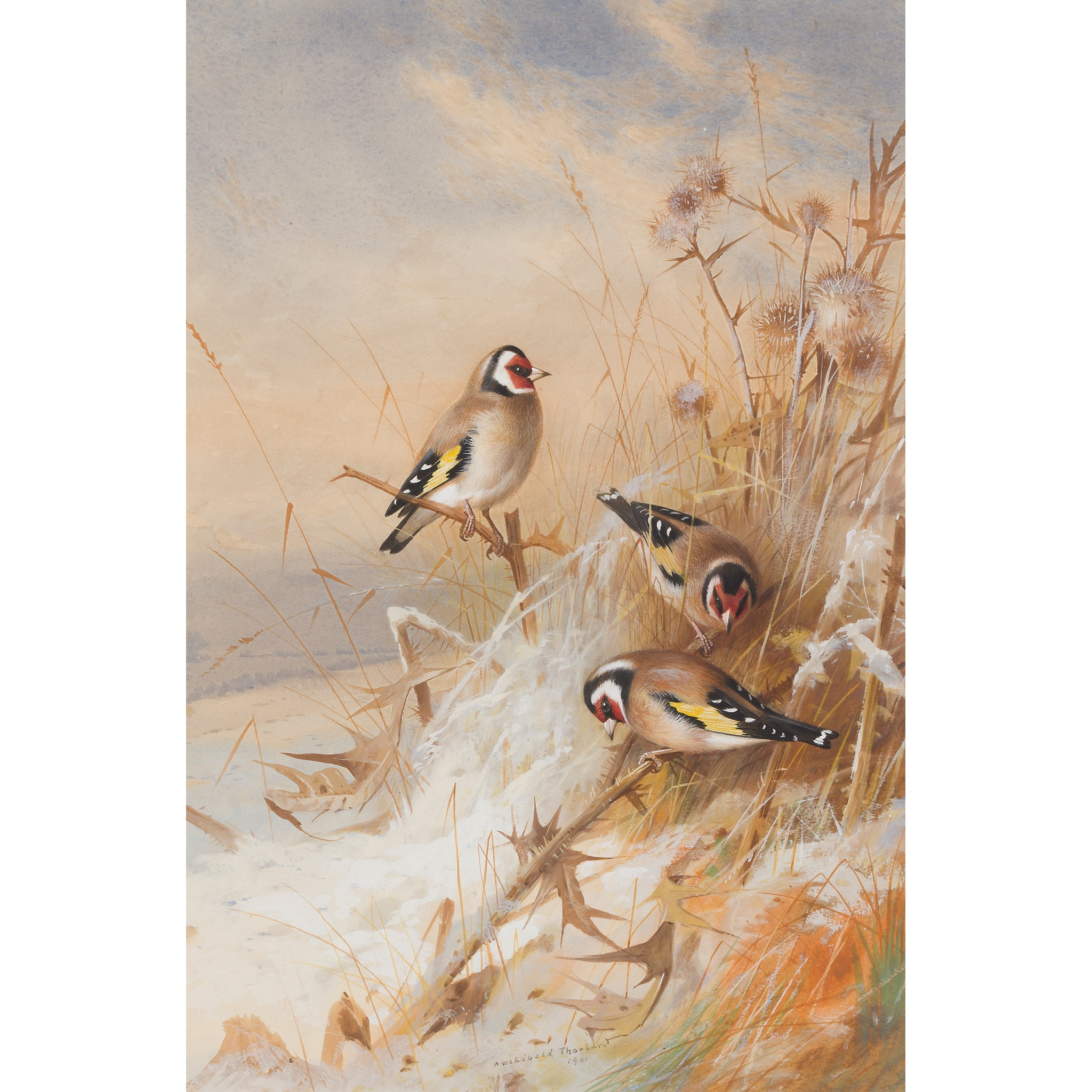 ARCHIBALD THORBURN (SCOTTISH 1860-1935) GOLDFINCHES IN THE SNOW
